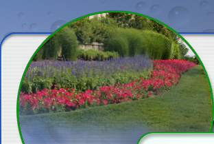 Lawn and Landcare Services Virginia Beach and Hampton Roads, VA